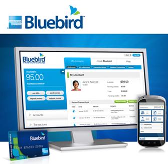 Bluebird At Walmart