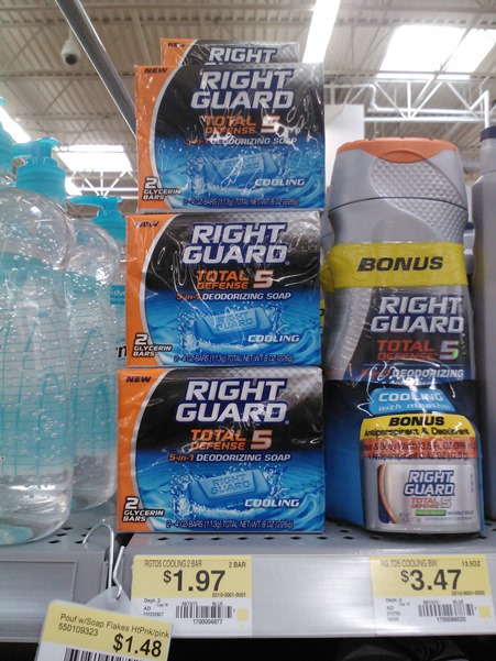 Right Guard Total Defense 5 Soap