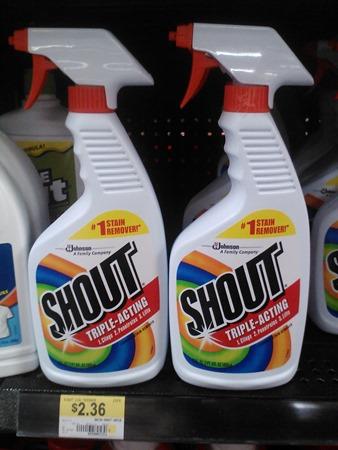 Shout-11-21-12-5.jpg
