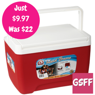 9-Quart Cooler Just $9.97! Down From $22!